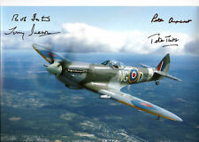Battle of Britain WW2 SPITFIRE multi signed 12x8 x 4