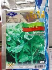 Chinese Kale(Large Leaf) Seeds Vegetable Seed 2,260 Seeds /10 G.