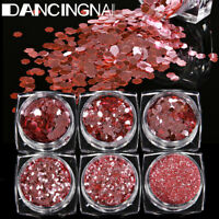 6Pot/Set Pink Holographic Flake Chunky Glitter Nail Face Tattoo Body Art Powder