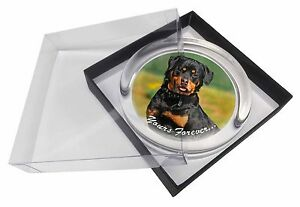 Rottweiler Dog 'Yours Forever' Glass Paperweight in Gift Box Christma, AD-RW6yPW