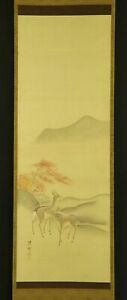 JAPANESE HANGING SCROLL ART Painting Deer and Red leaves Yokoyama Seiki  #E6322