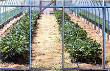 Eskay-Lite Vinyl Greenhouse Covering 54 in x 20 ft