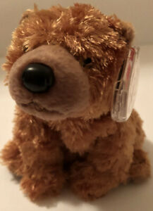 TY Beanie Baby SEQUOIA the Brown Bear MWMTs Stuffed Animal Toy New Retired