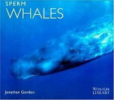 Sperm Whales World Life Library