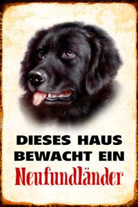 Hund Neufundländer bewacht Haus Blechschild Schild gewölbt Tin Sign 20 x 30 cm