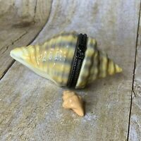 Trinket Box Conch Seashell With Charm Shell FLAW