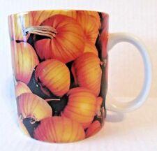 Starbucks Collectors Pumpkin Harvest Fall 2007 Ceramic Coffee Cup New
