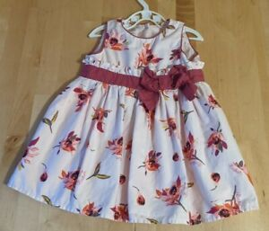 Baker Baby Girl's Ted Baker Pretty Dress 6-9m Months Pink Floral Pattern Girl