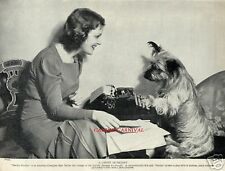 "CHARMING SKYE TERRIER DOG ""A Canine secretary"" ORIGINAL 1934 DOG ART Photo PRINT"