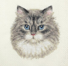 GREY TABBY CAT, KITTEN ~ Full counted cross stitch kit + All materials *Fido