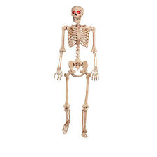5ft Crazy Bones Life Size Skeleton Light-Up Eyes Halloween Party Prop Decoration