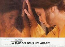 FAYE DUNAWAY LA MAISON SOUS LES ARBRES 1971 VINTAGE PHOTO LOBBY CARD N°3