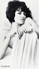 1966 Vintage 11x14 SULTRY NUDE FEMALE Woman Bed Fashion Glamour By WINGATE PAINE
