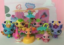 Littlest Pet Shop Bulk x 6 #2676#2677#2680#2681 Fairy Play Set Accessories