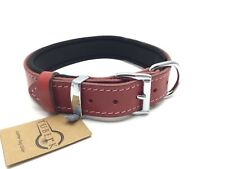 Pit bull Dog Collar Padded, Genuine Leather, Luxury Durable, Strong Adjustable L