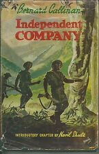 Independent Company by Bernard Callinan