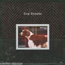 Ghana 2014 Dog Breeds Welsh Springer Spaniel Souvenir Sheet Mint Nh