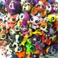 "Random 5X Littlest Pet Shop LPS Animals Cat Dog  2"" Figure Collection Doll Gift"