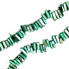 "16"" Green Shell 14-20mm Tusk Stick Beads Jewellery Making"