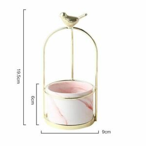 Ceramic Vase Wrought Iron Small Simple Design Frame Water Culture Green Plant