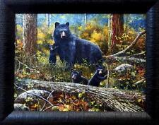 "Jim Hansel Age of Wonder Bear Cub Studio Canvas Framed Print- 19"" x 15"""