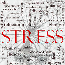 STRESS AND ANXIETY RELIEF WITH SELF HYPNOSIS - Professional Hypnosis CD
