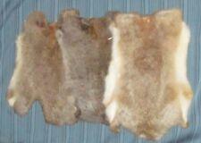 Rabbit Pelt - Genuine Leather Fur - Natural Brown Color