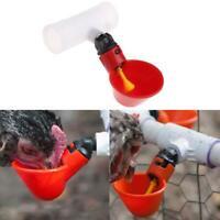 4PC Poultry Drinkers Hen Water Drinking Cups Chicken Bucket Waterer PPS Fittings