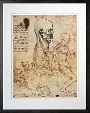 Study of the Physiognomy by Leonardo da Vinci. Art Print Poster. Black Frame