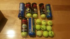 Lot of 30 Tennis Balls Used Ships 24 hrs Great for Pets Dogs Cats Mostly Penn