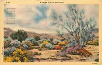 Linen Postcard CA K164 A Smoke Tree on the Desert Curteich Mojave Cancel 1942