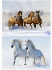 Pack Of 20 Horse Christmas Cards - Pack C