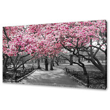 BEAUTIFUL PINK BLOSSOM TREES IN CENTRAL PARK CANVAS PRINT WALL ART PICTURE