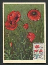 CSSR MK 1964 FLORA FEUERMOHN MAXIMUMKARTE CARTE MAXIMUM CARD MC CM d5686