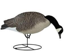 NEW Dakota Decoy 19200 Waterfowl Hunting Signature Series Feeder Geese (6 Pack)
