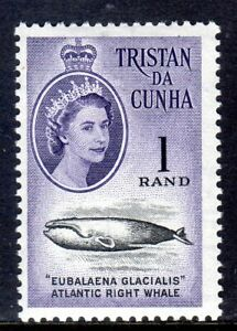 TRISTAN DA CHUNA      1961  SG54   1 Rand     MM   cv £50 in 2016