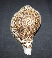 "Astamangala  Sankha Conch 12"" Circle x 8"" Height Hand Carved Nepal"