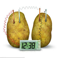 Potato Clock Novel Green Science Project Experiment Kit Lab Home School Toy PR