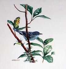 Dominica WWF Birds of the Caribe SOBRE Premier Día 1° FDC 827