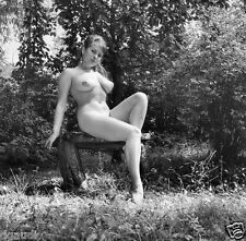 1960s Busty Nude Pinup sitting on wood bench out doors 8 x 8 Photograph
