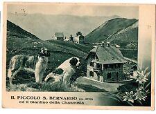CARTOLINA 1939 IL PICCOLO S. BERNARDO ED IL GIARDINO DELLA CHANOUSIA RIF. 11394