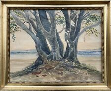 Große Bäume am Meer Buchen Ostsee Küste Aquarell Bilderrahmen Antik