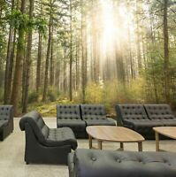 3D Forest Sunshine R231 Business Wallpaper Wall Mural Self-adhesive Commerce An