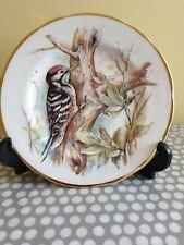 Fenton Bone China Woodpecker Plate