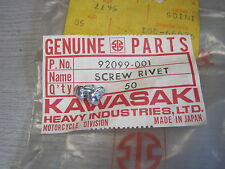 KAWASAKI NOS STEERING LOCK RIVETS H2 H1 S1 S2 A1 A7 F5 F8 F9 C2 G3 G4  92099-001
