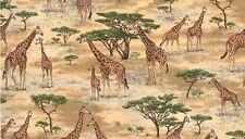 Fat Quarter Safari Jirafas Escénico Patrón 100% algodón acolchada Tela Makower