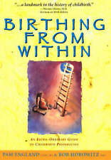 Birthing from within: An Extra-Ordinary Guide to Childbirth Preparation by Pam …