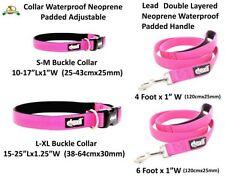 Collari rosi per cani nylon