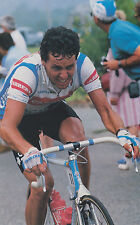 STEPHEN ROCHE TOUR DE FRANCE 1987 TEAM CARRERA JEANS POSTER