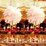 10/50pcs White Ostrich Feathers 30-35cm Wedding Party Centerpiece Banquet Decor